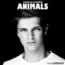 Animals - Martin Garrix